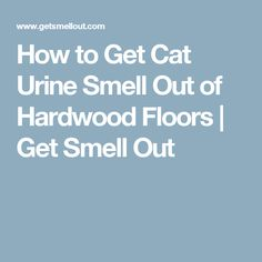 1000+ идей на тему: Запах Мочи в Pinterest | Кошачья Моча ...