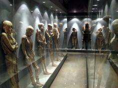 """Museo de las Momias de Guanajuato. Known as """"natural mummification"""" it is the process by which corpses are naturally preserved. There are many different environments where natural mummification occurs, the extremely cold, very dry environments, and bogs are all places in which bodies will, rather then rot away, mummify often only to be found thousands of years later. In the case of the Guanajuato mummies, they only had to wait a few hundred years, and were not so much discovered as evicted."""