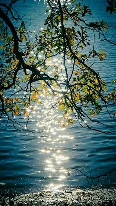 Nature - Sun diamonds glistening off the water.