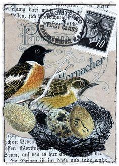 bird nest artist trading card