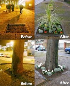 Guerilla gardening: voor meer groen in de stedelijke omgeving. En als je toch bezig bent, waarom dan niet meteen eetbaar groen?
