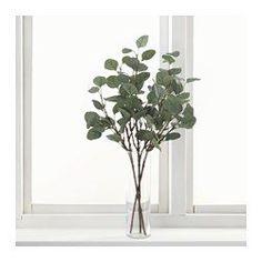 SMYCKA Flor artificial, eucalipto, verde - IKEA 3,99