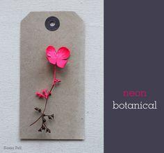 sania-pell-fluro-flowers-8