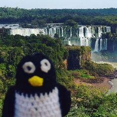 #waterfallwednesday #cataratasdoiguaçu #brasil Jul 2017 #pinguinoviajero #brazil #fozdoiguaçu #pingüinoviajero #travellingpenguin #traveller #travel #wanderlust #viajero #iguazu #iguazufalls #iguazufallsbrazil #southamerica #waterfall #waterfalls #lovetravel #wanderlust #travelling #travellingdoll #waterfallwednesday