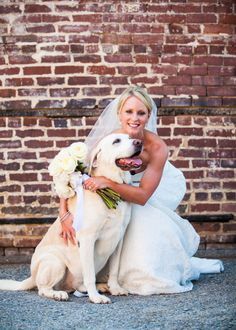 Yellow lab with bride. Photography By / http://alexthephotoguy.com