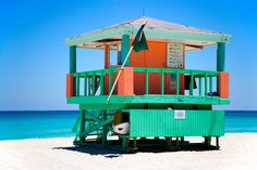 Visiting Florida soon?! This list of things to do in Miami will surely help you plan out your days in the city! Beaches and brunches to arts and gators!