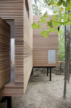 Steven Holl, T Space, cedar rain screen wrapped building floats on columns in the woods