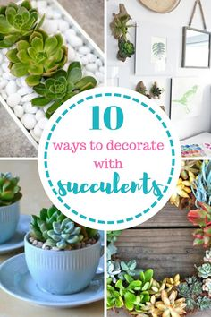 Succulents, How to Decorate With Succulents, How to Grow Succulents, Succulent Gardening, Gardening Succulents, How to Garden Succulents, Indoor Gardening, Decorating with Succulents, DIY Gardening, Gardening 101, Indoor Gardening