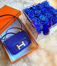 "BopTalk on Instagram: ""A pop of electric blue to brighten up your midweek!💙 📸 @panthere_instyle #hermesconstance #hermes #hermesblue"" Hermes Constance, Louis Vuitton Twist, Electric Blue, Shoulder Bag, Bags, Pop, Instagram, Shoes, Fashion"