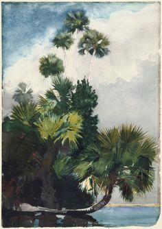 Palm Trees painted in Watercolor.  Winslow Homer.  Beautiful!