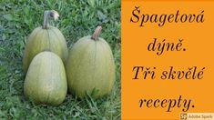 Tři recepty na špagetovou dýni Fruit, Food, Essen, Meals, Yemek, Eten