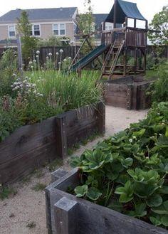 wooden raised beds for garden design