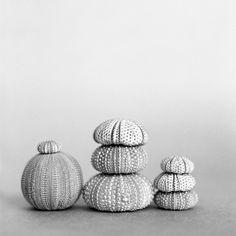 Gray | Grey | Gris | グレー | Grigio | серый | Gurē | Colour | Texture | Pattern | Style |