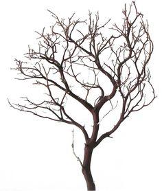 "Natural Red Manzanita Branches, 18"" tall. - Blooms and Branches"