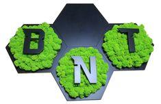 Logo wykonane z czarnych heksagonów i porostu fińskiego - chrobotka reniferowego. Nintendo Games, Logo, Logos, Environmental Print