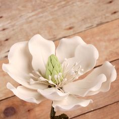 Edible Full Bloomed White Magnolia gumpaste sugarflower cake decorations perfect for wedding cakes decorating rolled fondant cupcakes. | www.CaljavaOnline.com #caljava #sugarflower #magnolia