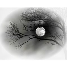 Копия lunapaisagem060.png ❤ liked on Polyvore featuring backgrounds, moon, effects, art, fillers, embellishment and detail