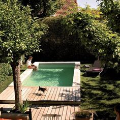 How To Fit a Pool into a Small Backyard - Pergola Ideas Pools For Small Yards, Small Swimming Pools, Swimming Pools Backyard, Swimming Pool Designs, Garden Pool, Garden Bed, Garden Paths, Small Backyard Design, Small Backyard Landscaping