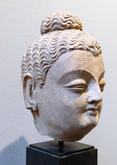 HEAD OF THE BUDDHA terracotta Gandhara-region (Hadda), ca. 3rd – 4th cent. high: 19 cm. Terracotta is unusual in Gandhara sculpture. This head is in the pure-Afghan Hadda-style.