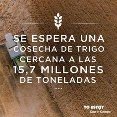 YOESTOY CON EL CAMPO (@estoyconelcampo)   Twitter