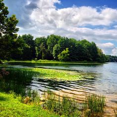 Piney Run Park in Sykesville, MD is a local county park that offers walking trails, picnic pavilions, a play ground, a nature center, fishing, and boating.  Our family has enjoyed this park for years!