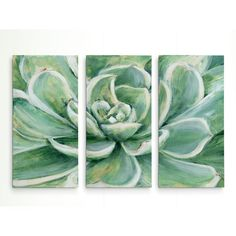 Bungalow Rose 'Succulent' Acrylic Painting Print Multi-Piece Image on Gallery Wrapped Canvas Size: 3 Canvas Paintings, Multi Canvas Painting, Painting Prints, Canvas Wall Art, Canvas Prints, Flower Paintings, Canvas Canvas, Rock Painting, Oil Paintings