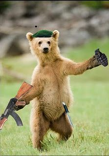 216 best guns images in 2018 guns firearms weapons - Pictures of funny animals with guns ...