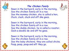 The Chicken Family song