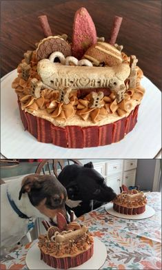 Ingredients included applesauce, pumpkin, whole. - Dog Treat Recipes - first birthday cake-Erster Geburtstagskuchen Dog Cake Recipes, Dog Biscuit Recipes, Dog Food Recipes, Dog Safe Cake Recipe, Diy Dog Treats, Puppy Treats, Homemade Dog Treats, Puppy Food, Pet Food