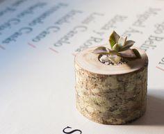 Succulent planter  Planter branch  Small wooden por LuzDelBosque