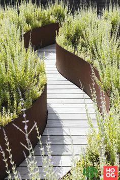House Landscape, Landscape Architecture, Landscape Design, Modern Landscaping, Backyard Landscaping, Back Gardens, Outdoor Gardens, Bush Garden, Home Garden Design