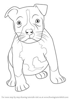 Learn How to Draw a Pitbull puppy (Other Animals) Step by Step : Drawing Tutorials Pitbull Drawing, Puppy Drawing, Bullterrier Tattoo, Pitbull Wallpaper, Puppy Tattoo, Dog Stencil, Staffy Dog, Girl And Dog, Animals