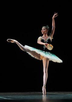 ZsaZsa Bellagio: Ballet Beautiful Danielle Marinho