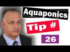 Basic Filtration Setup Ask The Aquaponics God Ep12