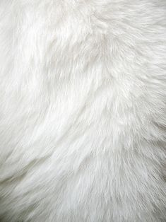 white fur, rug, fun fur