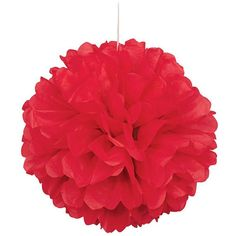 """SUNBEAUTY 10""""/25cm 5pcs Tissue Paper Pom Poms Flower Balls Hanging Decoration for Birthday Wedding Bridal Shower Party Red Color"""