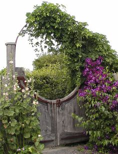 Wood Gate with top ring and vine    alamodeus: Through the garden gates ...