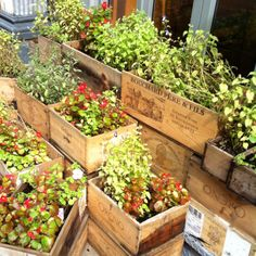 Using wooden wine crates as planters. Farmhouse chic Please visit: www.thewonderfulwoodcompany.com, TWWCUK@gmail.com | Global Shipping