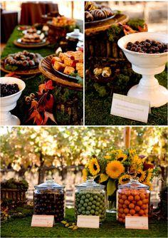 Incredible woodland dessert buffet