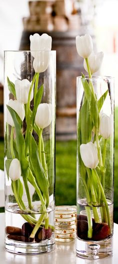 Decoration with tulips white tulips elegant arrangement glasses cut flowers little . - Decoration with tulips white tulips elegant arrangement glasses of cut flowers keep little water fr -