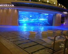 Golden Nugget, Las Vegas.  It's a pool that's a shark tank that's a pool - and it's AMAZING.  I love this place!