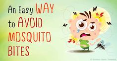ways to avoid mosquito bites- precaution and cure