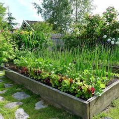 Nutzgarten Mias Landliv: The potager Water Leak Prevention Options Those who have experience the pai Potager Garden, Edible Garden, Garden Beds, Vegetable Garden, Herb Garden Design, Dream Garden, Garden Projects, Garden Inspiration, Backyard Landscaping