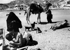 MICHA BAR AM Taba Beach resort, a tourist sunbathing as a Bedouin woman looks for clients for camel riders among the tourists