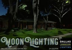 We won't have another #FULLMoon until 8/17, but you can enjoy the #ethereal appearance of full #moonlight every night! Call #DallasLandscapeLighting to discuss the #magical possibilities! 214-202-7474 http://www.dallaslandscapelighting.net/dallas-landscape-lighting/tree-lights-moon-light-moonlighting/ #Dallas #HighlandParkTX #FriscoTX #Plano #outdoorlighting #nightscaping #nightlighting #landscapelighting #summernights #DFW #CollinCountyTX #RockwallTX