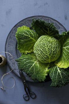 The stunning artistry of a Savoy cabbage. Use to replace lettuce in salads and tacos. Food Styling, Food Photography Styling, Fruit And Veg, Fresh Fruit, Fresh Vegetables, Fruits And Veggies, Photo Fruit, Savoy Cabbage, Green Cabbage