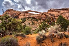 Visit Arches National Park Dead Horse Point State Park Canyonlands in a Day Delicate Arch, Canyonlands National Park, Family Road Trips, Arches, State Parks, Monument Valley, Vacations, National Parks, Horses