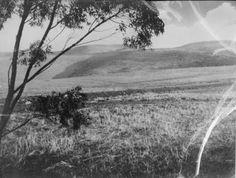 1935 Palos Verdes.