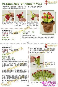 多肉植物盆栽的钩法教程