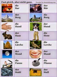"""""""Mein Blog ist mein Burg"""": Sa invatam impreuna limba germana din poze."""